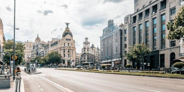 Comprar aceite de oliva en Madrid