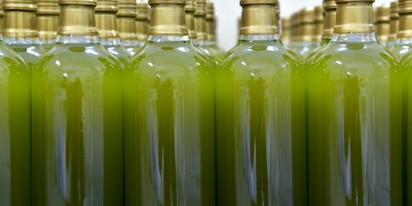 Mejor aceite de oliva calidad precio